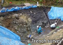 Trench survey